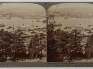 Christiania og havnen – Sett fra Ekeberg med slottet til høyre (1905)