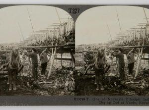 Opphenging av torsk, Vardø