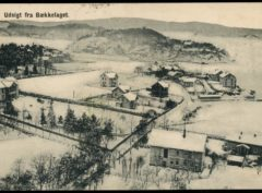 Kristiania – Udsigt Bækkelaget